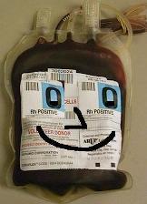 TommyTransfusion