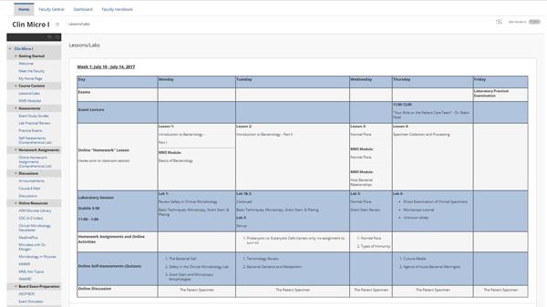 2_Weekly Calendar